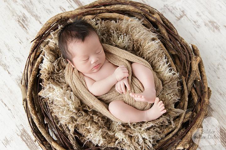 Professionelle Neugeborenenfotos im Fotostudio in Berlin