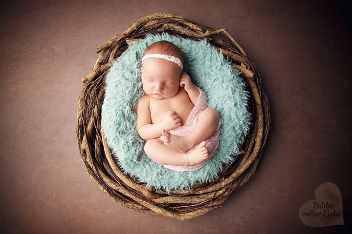babyfotograf-berlin-babyfotografin-babyshooting-babyfotoshooting-fotostudio