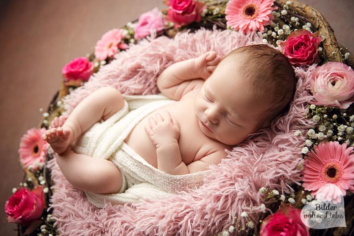 babyfotografie-berlin-brandenburg-babyfotograf-babyfotografin