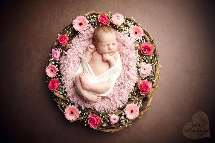 babyshooting-berlin-potsdam-neugeboren-fotografie-blumenkranz-bilder-voller-liebe
